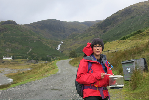 Learning to navigate as a leader on Mountain Leader training