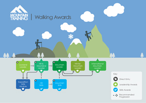 Walking Infographic